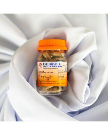 HAI-O Wild Ling Zhi Capsule (50's)